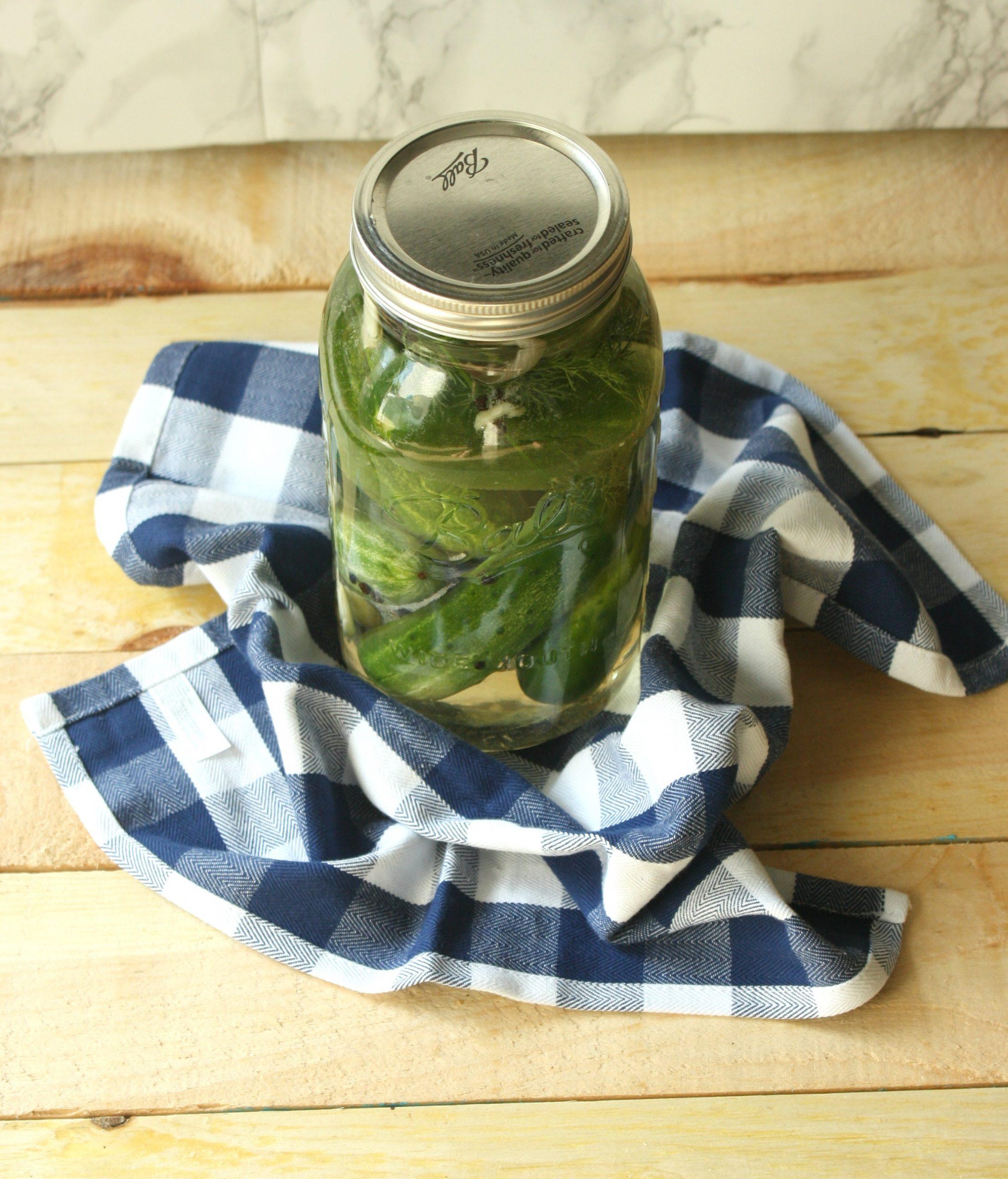 Refrigerator Pickles Recipe