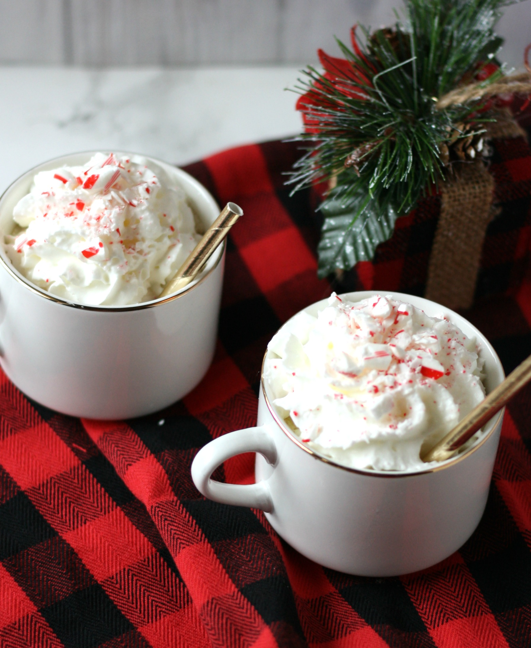 peppermint mocha on buffalo plaid blanket