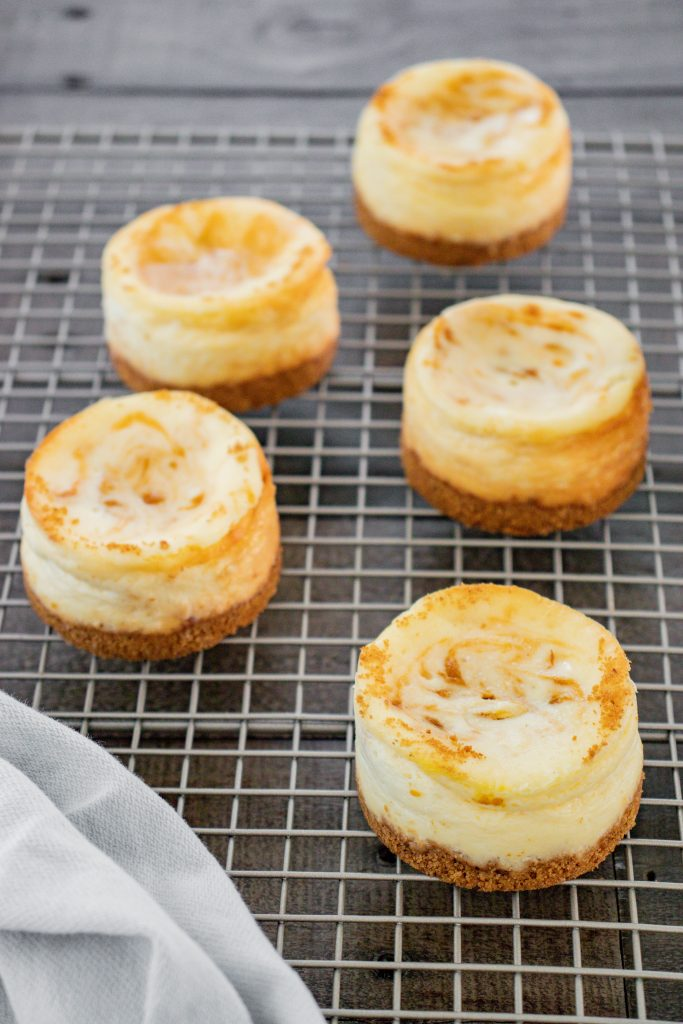 Mini Pumpkin Swirl Cheesecakes Recipe