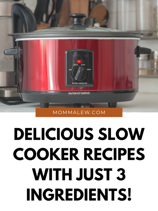 The Best 3 Ingredient Slow Cooker Recipes