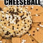 s'mores cheeseball