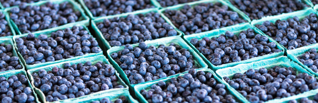 blueberries at the farm market