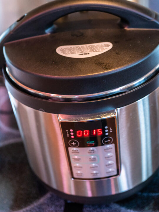 The Best Instant Pot Recipes for Beginners
